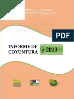 Informe de Coyuntura Eva 2013 Revisado