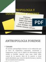Antropologia y Odontologia Forense