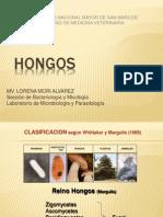HONGOS 2009