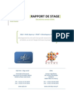 Rapport de Stage 2A