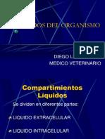 LIQUIDOS DEL ORGANISMO.ppt