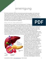 die-leberreinigung - Kopie.pdf
