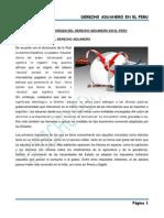 Derecho Aduanero en El Peruu