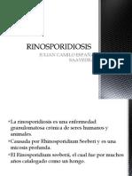 rinosporidiosis-111114172441-phbghdfpapp01