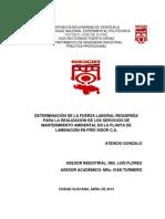 Determinacion Fuerza Laboral Requerida Realizacion Servicios Mantenimiento Ambiental