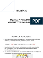 Proteínas 2013 II
