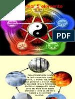 Teoria Celor 5 Elemente by Voicila Petruta Andreea