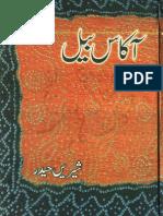 Akaas Bail By Shireen Haider .pdf