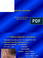 C11 Tumorile Colonului Prof v Stoica 2013