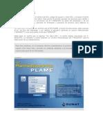 PLAME.pdf