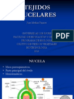 TEJIDOS NUCELARES