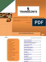 TRANSEÚNTE Edición 10