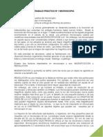 1_laboratorio_01_microscopia.pdf