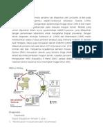Epidemiologi.docx