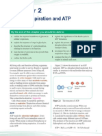 cellular respiration and atp synthesis