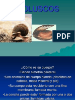 losmoluscos-120228051503-phpapp02