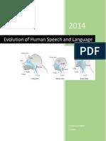 Evolution of Human Speech and Language