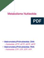 4. Metabolisme Nukleotida