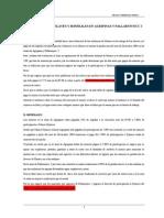Informe Sobre Relaves y Minerales en La Mina Agripinas y Pallarniyocc 2