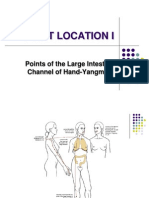 Class 2 - Hand Yangming Large-Intestine Channel