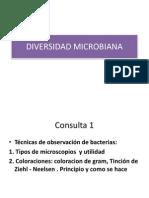 Clase de Diversidad Microbiana2014