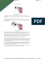 Orbita-e-Vias-Lacr.pdf