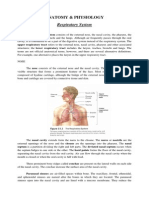ANATOMY of Pneumonia