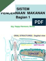 Sistem Pencernaan Mkn 1- Oral