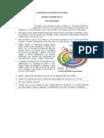 Ficha Controlo Celuar 2013