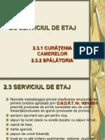 CURS 7 THR 2.3 SERVICIUL DE ETAJ.ppt