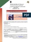 manualdelprogramapronafcapunt-090609210423-phpapp01