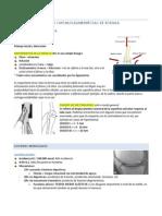 LESIONES MENISCALES Y CAPSULOLIGAMENTOSAS DE RODILLA.pdf