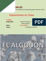 EL ALGODÓN.ppt