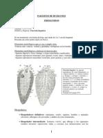 Guía parasitología