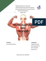 Musculatura del tronco.pdf