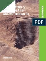 Informe Moran Mineria