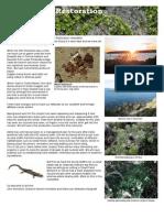 Stuart Park Restoration Newsletter No1
