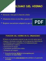 Metabolismo Del Hierro 2007