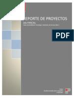 Reporte de Proyectos