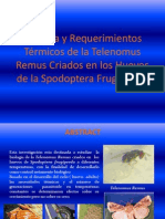 Biología y Requerimientos Térmicos de la Telenomus Remus.pptx