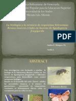 La biología y la térmica de requisitos Telenomus Remus insecto criado en huevos de Spodoptera frugiperda.pptx