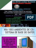 Auditoria 1003 - 1005 Exponer
