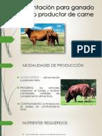 Alimentación Para Ganado Bovino Productor de Carne