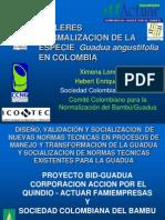 Taller Normalizacion de La Guadua Medellin
