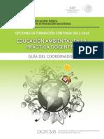 Guia Del Coordinador Form Educ Amb II