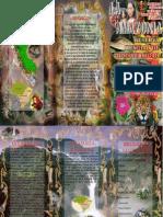 Inpredoc2.PDF