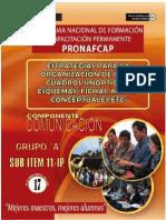 Pronafcap 2009 Estrategias Para La Organizacion de Ideas