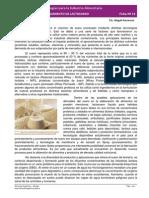 Ficha 13 Lactosuero