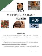 feira minerais09-1