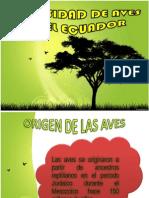 AVES (1)